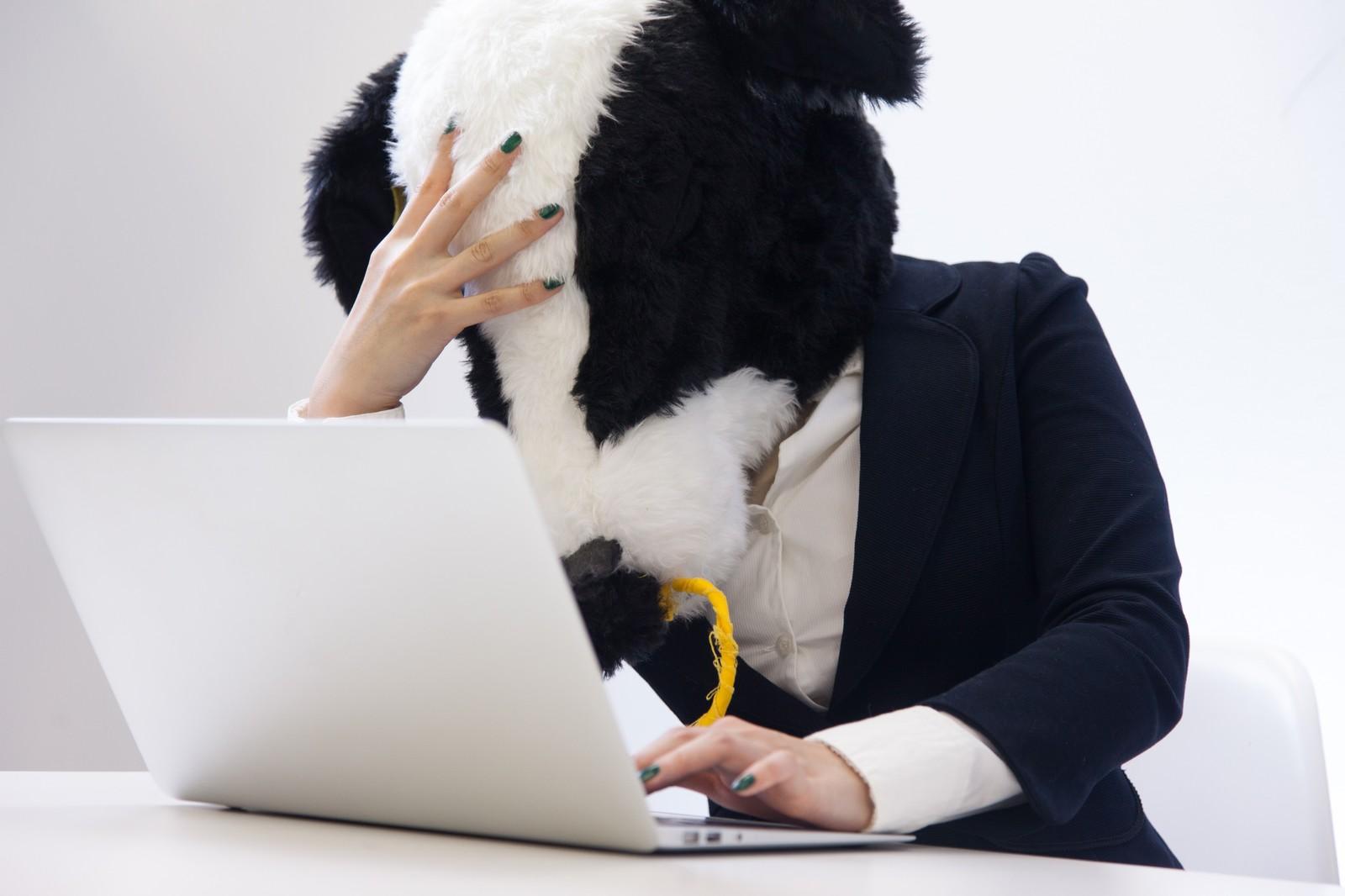 頭を抱える牛